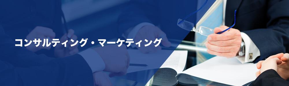コンサルティング・マーケティング関連組織への顧問インタビュー